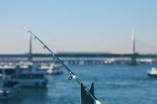 just-fishing-picjumbo-com